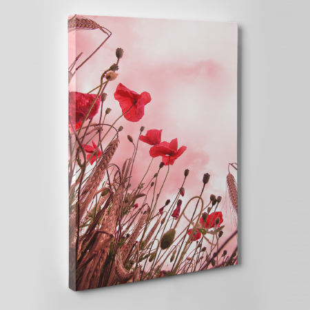 Tablou canvas floral, Pink and Poppies3