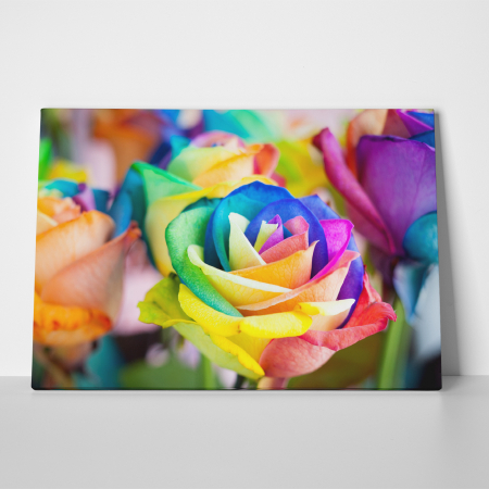 Tablou canvas floral, Rainbow Roses2