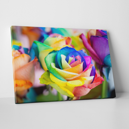 Tablou canvas floral, Rainbow Roses0