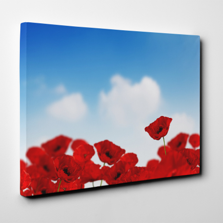 Tablou canvas floral, Sky and Poppies2