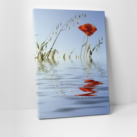Tablou canvas floral, Water Reflections0