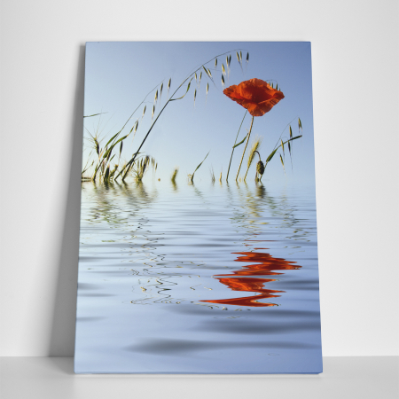 Tablou canvas floral, Water Reflections2