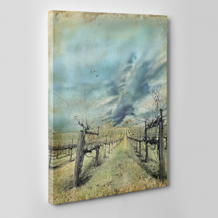 Tablou canvas natura, Wineyard1