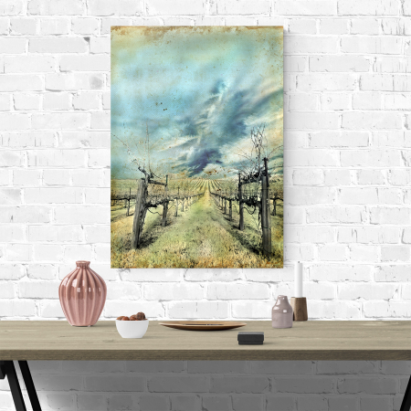 Tablou canvas natura, Wineyard3