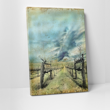 Tablou canvas natura, Wineyard0