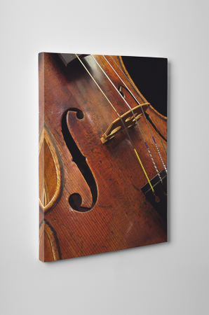Tablou canvas retro, Violin1