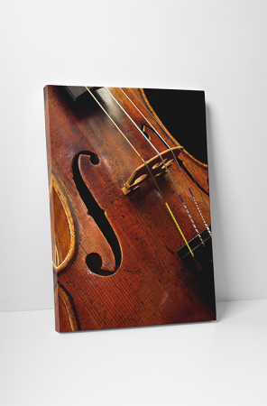 Tablou canvas retro, Violin0