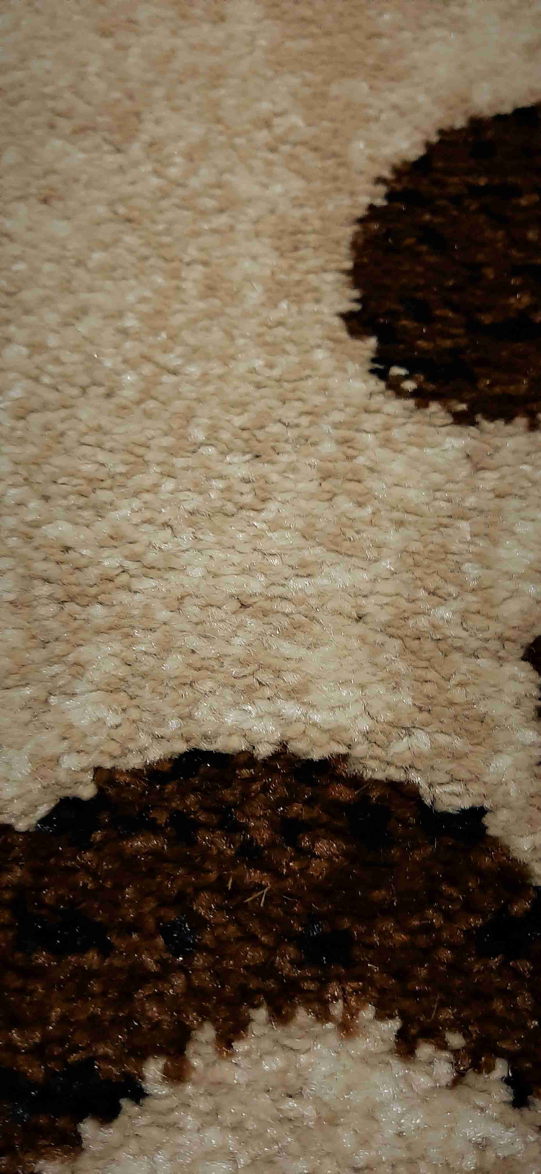 Traversa Covor, Cappuccino 16028-118, Bej / Maro, 100x500 cm, 1700 gr/mp 5