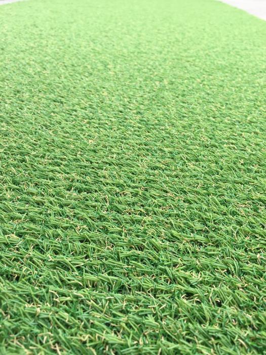 Covor Iarba Artificiala, Tip Gazon, Verde, Natura, 100% Polipropilena, 10 mm, 200x400 cm 1
