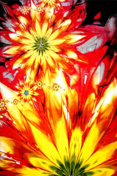 Covor Modern, Kolibri Flower, 120x170 cm, 2300 gr/mp 0