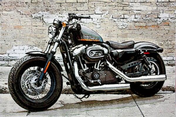 Covor Kolibri Motocicleta, 80x150 cm, 2300 gr/mp [0]