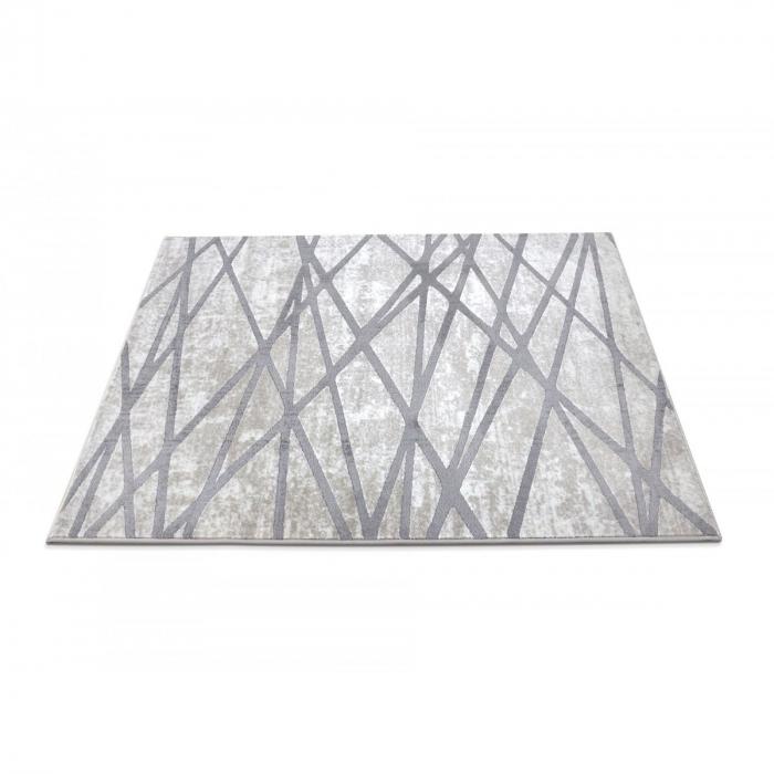 Covor Modern Sofia, 41010-1166, 120x170 cm, 2450 g/mp [2]