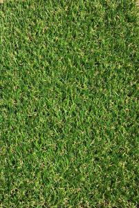 Covor Iarba Artificiala, Tip Gazon, Verde, JAKARTA, 100% Polipropilena, 20 mm, 300x400 cm0