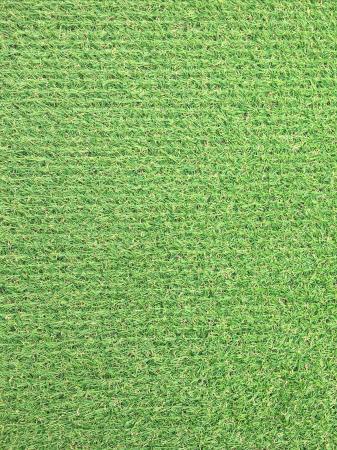 Covor Iarba Artificiala, Tip Gazon, Verde, Natura, 100% Polipropilena, 10 mm, 200x400 cm0