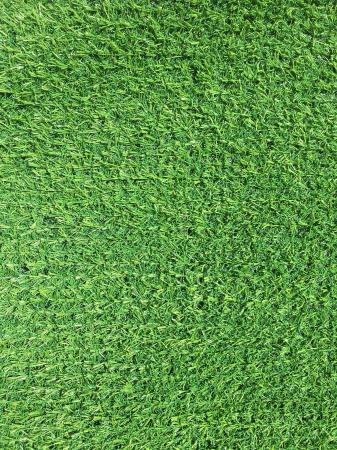 Covor Iarba Artificiala, Tip Gazon, Verde, Tropicana, 100% Polipropilena, 10 mm, 200x400 cm [0]