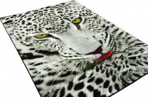 Covor Kolibri Leopard 11122, 80x150 cm, 2300 gr/mp1