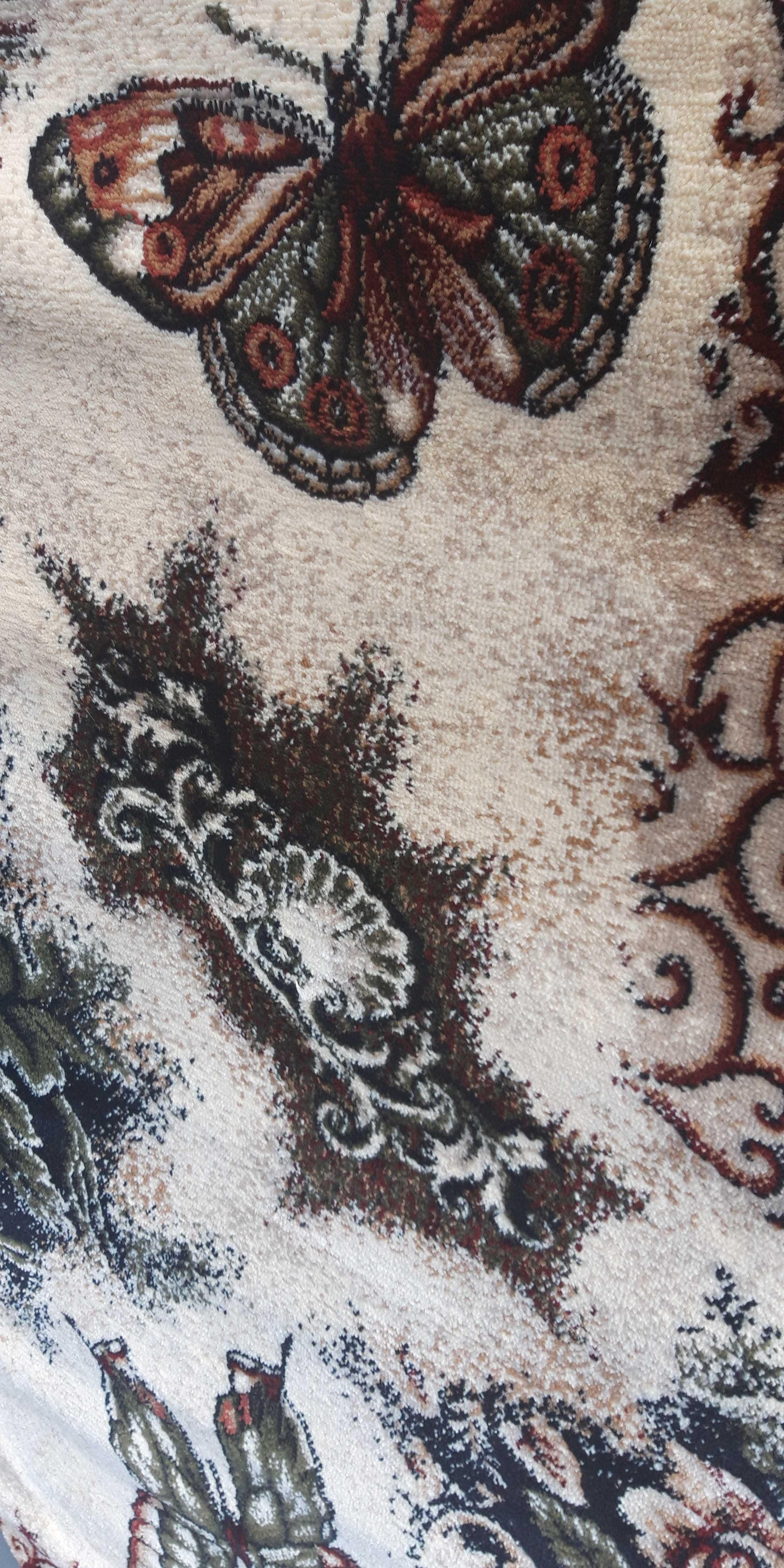Set 3 Covoare Lotos 1607 Fluturi, Multicolor: 2 buc. 80x150 cm, 1 buc. 150x230 cm. [6]