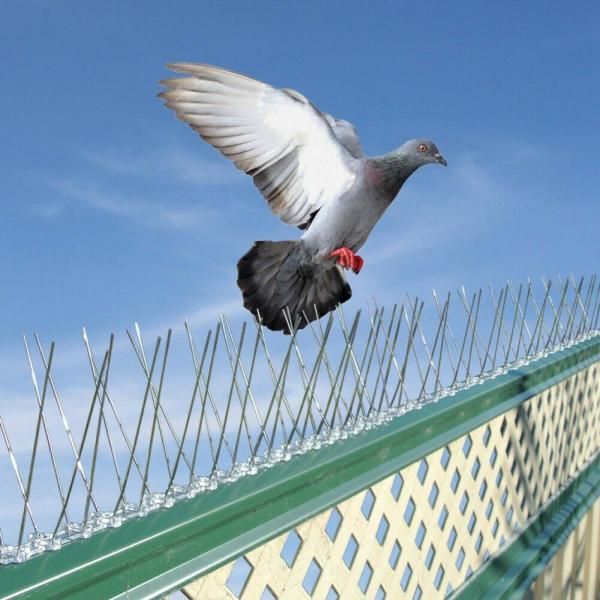 Țepi împotriva păsărilor Inox/PVC 2
