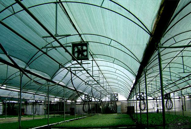 Plasa de umbrire verde 1 m grad umbrire 90% 1