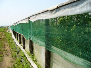 Plasa verde umbrire, 1.7 latime x 10 ml lungime, grad de Umbrire 90 % [2]