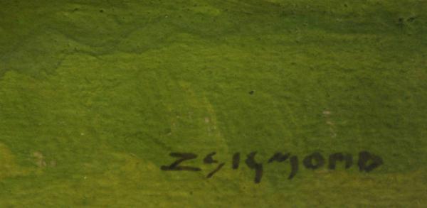 ZSIGMOND Béla, Parc în Baia Mare [1]
