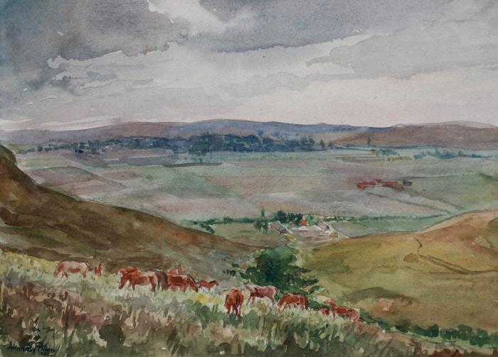 ANDRÁSY Zoltán, Cai pe deal, 1952 [0]