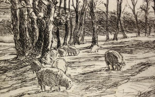 BOLDIZSÁR István, Oi la păscut 1
