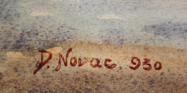 D. NOVAC, Birt sătesc, 1930 3