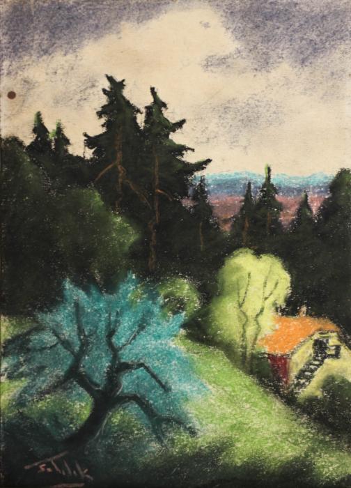 SZTELEK Norbert, Peisaj cu casă în pădure I Pădure [0]