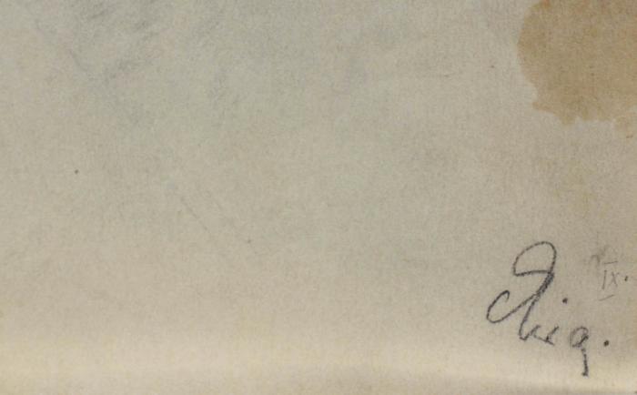 AUTOR neidentificat, Fetiță cu fundă albă [2]