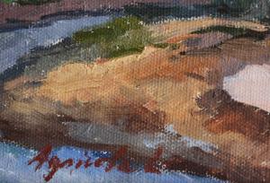 AGRICOLA Lidia, Peisaj pe malul Săsarului3