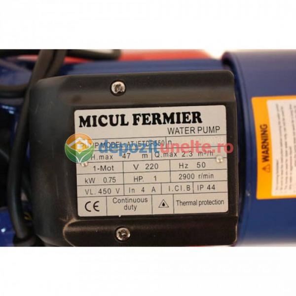 Hidrofor AUTO-JET DP550 Micul Fermier 1