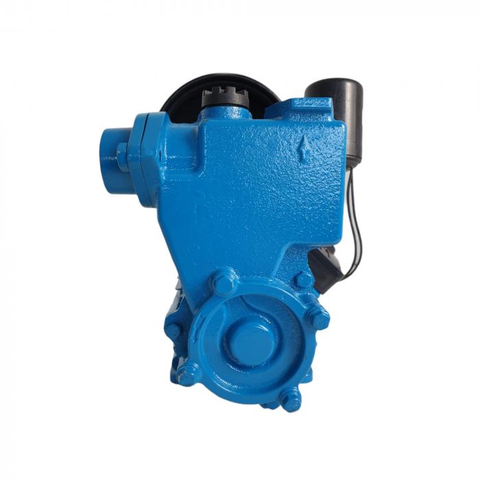 Mini Hidrofor Aquatic Elefant PS170 fonta, Silentios, 0.37 kW, Turbina bronz, Max 1.8 bari [2]