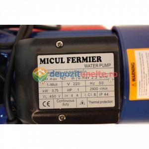 Hidrofor AUTO-JET DP550 Micul Fermier1