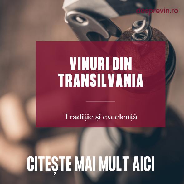 Articol blog Saptamana Transilvaneana