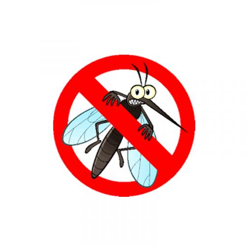 Protectie Insecte