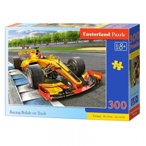 Puzzle 300 Pcs premium - Castorland 0