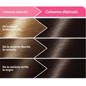 Vopsea Pentru Par Loncolor Ultra Castaniu inchis, Nr. 3, 100ml1