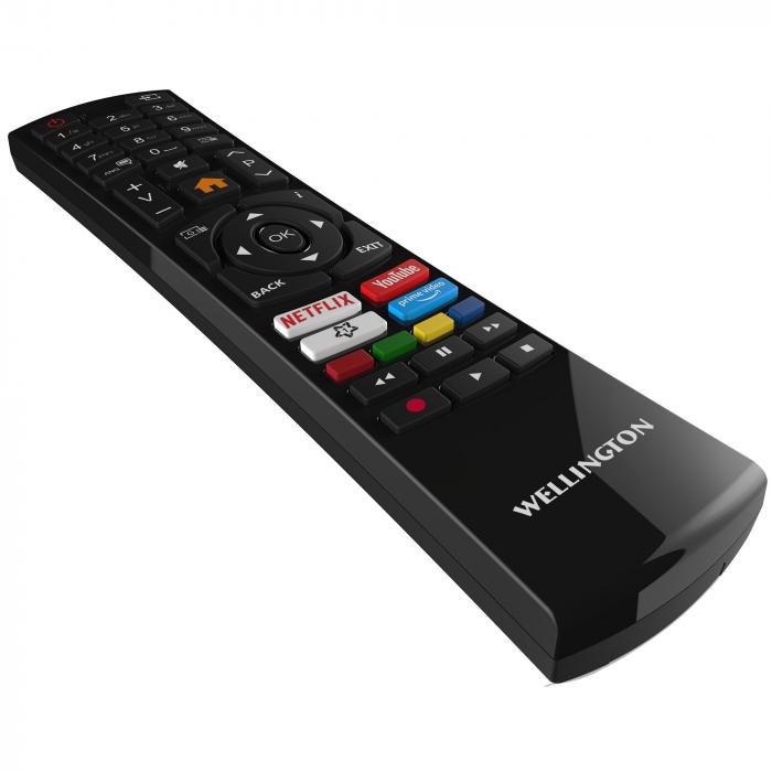 Televizor LED Smart Wellington, 61 cm, 24HD279, HD [2]