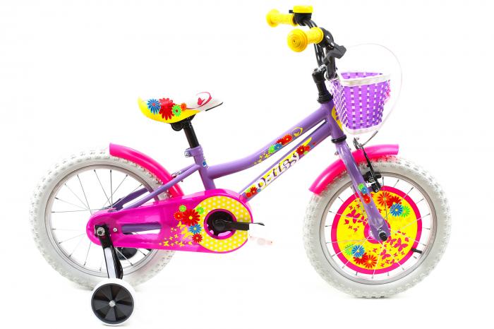 Bicicleta Copii Dhs 1602 Violet 16 Inch 1