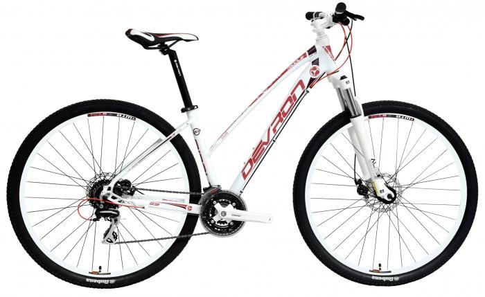 Bicicleta Mtb Devron Riddle Lady Lh1.9 M Nasty Violet 29 Inch 2