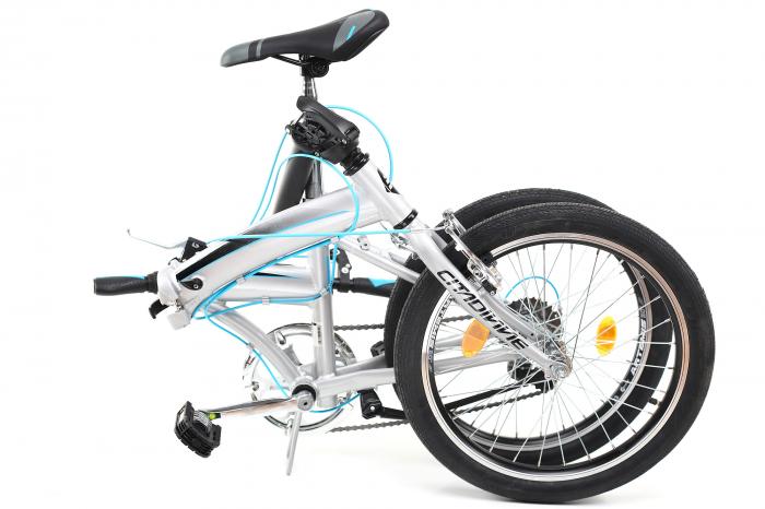 Bicicleta Pliabila Dhs 2095 Gri 20 Inch 7