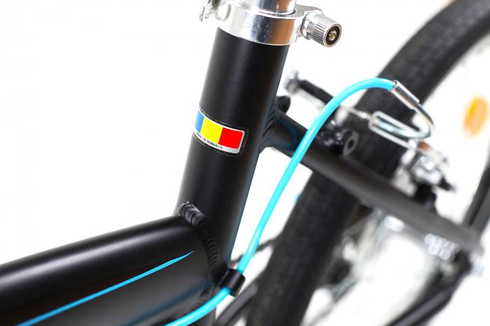Bicicleta Pliabila Dhs 2095 Gri 20 Inch 4