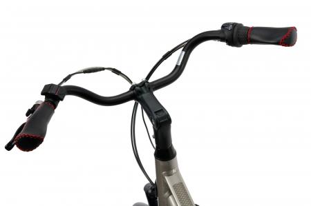 Bicicleta Electrica Devron 28122 L Gri 28 Inch9