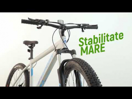 Bicicleta Mtb Afisport M2 - 29 inch, L , Argintiu [19]