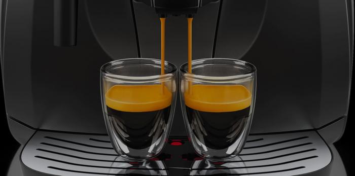 Espressor automat Gaggia Besana, 1400W, 15 bar, rasnita ceramica, sistem spumare lapte manual, Negru [5]