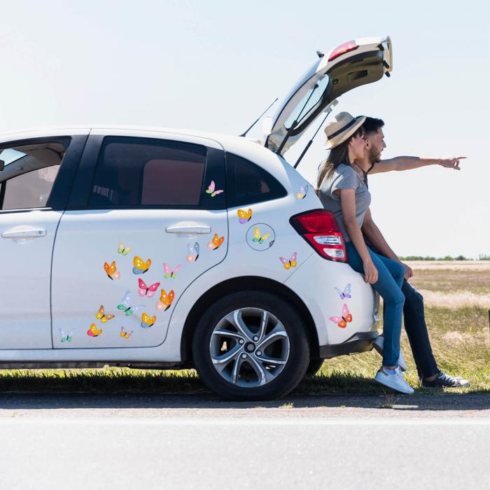 Set stickere auto - Fluturi multicolori #154 [0]