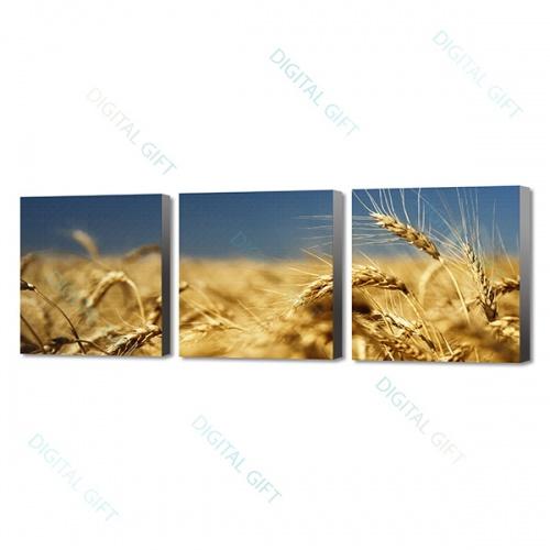 Tablou compus - Lan de grâu 0