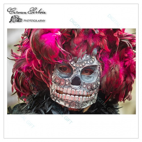 Tablou simplu - Carnaval la Veneția 33 1