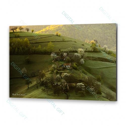 Tablou simplu - Peisaj de primăvară 0